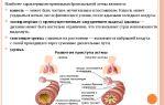 Развитие астматического кашля