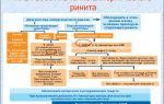 Клиническая картина и методы терапии хронического аллергического ринита